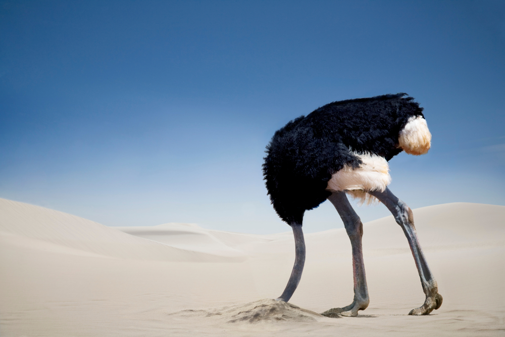 Ostrich-burying-head-in-the-sand-Tsavo-East-National-Park-Kenya-AfricaAltrendo-Imagess